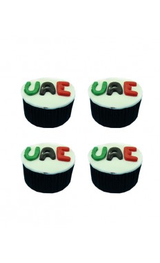 National Day Cupcakes I