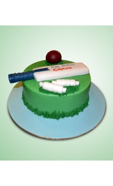 Cricket Lover Cake