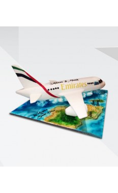 Emirates Airlines Cake II