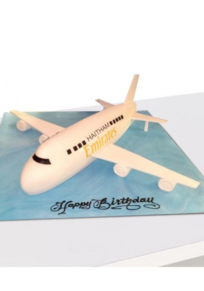 Emirates Airlines Cake III