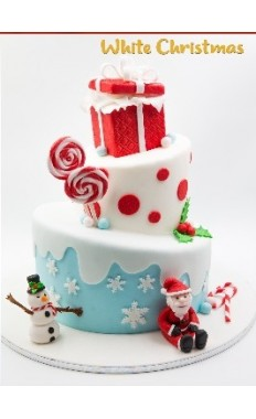 Winter White Christmas cake