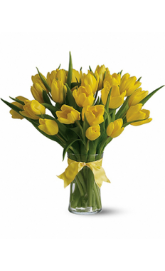 30 Yellow Tulips