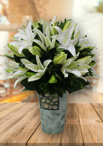 Beauty Of Pure White Lilies