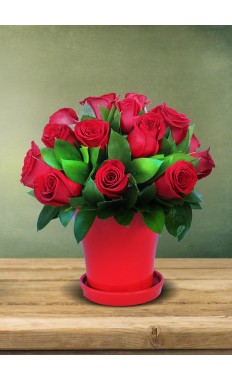 Chic Red Rose Arrangements