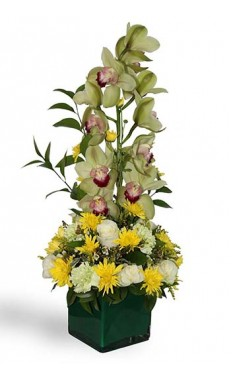 Unforgettable Elegance Cymbidium Orchid Bouquet