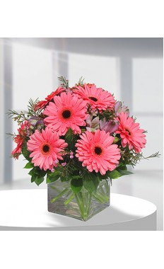 Gerbera Glory Pink Bouquet