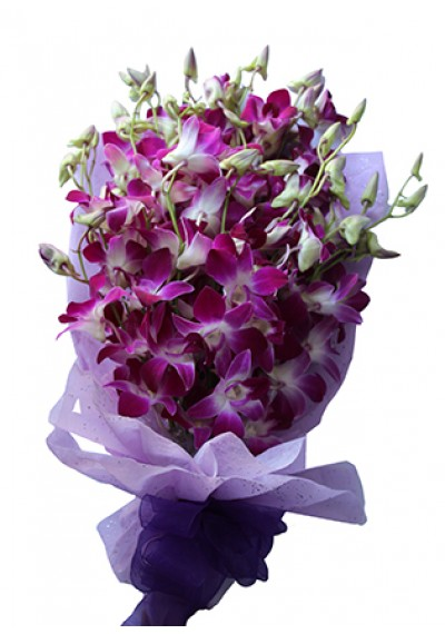 20 Orchids Bouquet
