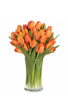 Orange Tulip Bouqet