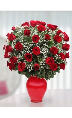 Endearment Through 50 Red Roses