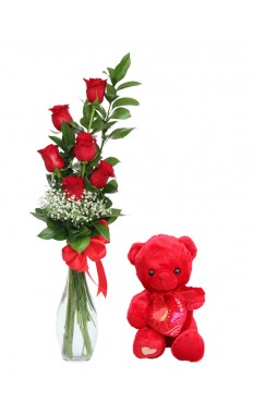 Six Red Rose With Teddy Bear