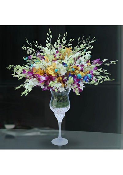 Colorful Orchids Arrangement