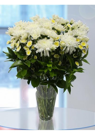 20 Long Stem Chrysanthemum