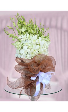 White Orchids Hand Tied