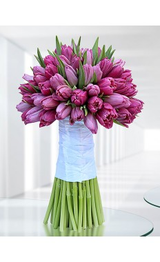 Purple Hand Tied Tulips