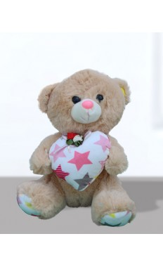 Medium Brown Teddy