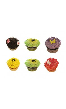Assorted Colorful Cupcakes